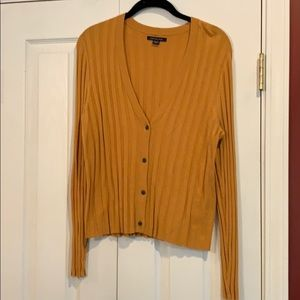 AEO XL Women's Gold V Neck Cardigan